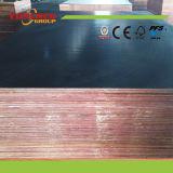 a película marinha da madeira compensada de 1220*2440*18mm enfrentou a madeira compensada