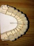Metallo di Co/Cr fuso al ponticello di ceramica dal laboratorio dentale della Cina