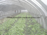 Против насекомых Net против белого цвета для полетов Net для овощей Greenhoure