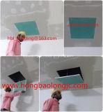 Fornitore del comitato di accesso del soffitto del principale uno e del portello di accesso