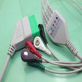Nihon Kohden einteiliges Kabel der Reihen-ECG und Leitungsdrähte (AMD Y0012A5A)
