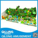 Hohe Qualität Indoor-Spielplatz (QL-3062C)