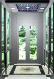 파노라마 유리제 집 작은 가정 별장 엘리베이터