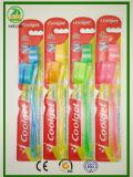 Heiße Verkäufe Coolget Marken-transparente Griff-Erwachsen-Zahnbürste