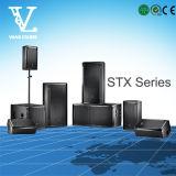 Stx800 система PA диктора 15inch серии Stx825 двойная ПРОФЕССИОНАЛЬНАЯ тональнозвуковая