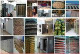 Nuevo tipo máquina vegetal del secador de la pompa de calor de la energía de la deshidratación