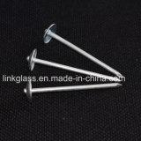 Ногти толя зонтика рабата общие гальванизированные стальные для конструкции крыши (STRN01)