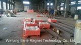 ISO/Ce Bescheinigung Rcyb Aufhebung-magnetisches Trennzeichen für Kohle-Pflanze