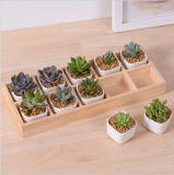 Mesa de lazer com 5 potes cerâmicos de cerâmica