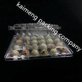 Diseño personalizado PET transparente de plástico Bandejas de codorniz paquete de huevo (bandeja de plástico para alimentos)