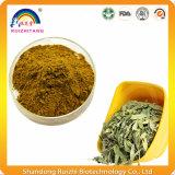 Polvere dell'estratto del foglio della senna del prodotto di sanità