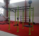 De Apparatuur van de Gymnastiek van de Sterkte van de hamer/de Horizontale Installatie van de Staaf van de Aap met AchterOpslag (SF1-7002)