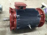 20kw Pmg com o gerador de ímã permanente Output 380V de 220V 50Hz
