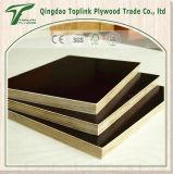 Álamo impermeable de carpintería Fabricante