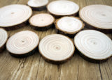 Rebanadas Polished naturales de madera de pino