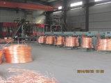 Fornecedor de China do fio de bronze do fio de cobre com alta qualidade