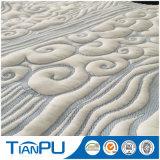 St-Tp67 300GSM 40% Viscose 60% Poliéster Tecido de malha Anti Dustmite