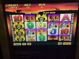 Nuove slot machine del flipper di programma di centinaia di arrivo da una galleria