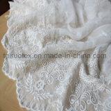 Poly bordado en seda, Chiffon tejido tejido vestido de dama