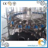 Ligne de production de remplissage direct de petite capacité