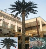 Albero artificiale dell'alga per la decorazione dell'alloggiamento
