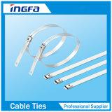 Epoxid-Belüftung-überzogene Strichleiter-Edelstahl-Kabelbinder für Lieferung