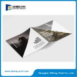 Saddele sutura Paper Company Brochure