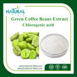 緑のコーヒー豆のエキスのChlorogenic酸50%、HPLC著60%