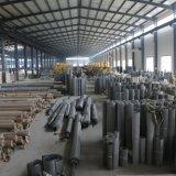 Rete metallica di tessitura normale dell'acciaio inossidabile (10 x 79)