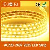 Luz de tira aprovada do diodo emissor de luz de RoHS AC230V SMD2835 do Ce