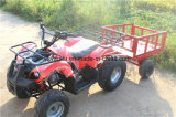 Nuevo diseño de 125cc Gran almacenamiento eléctrico ATV
