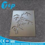 Panneau perforé pour le panneau de mur extérieur et intérieur en métal