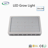 200PCS*10W高い内腔LEDは屋内プラントのために軽く育つ