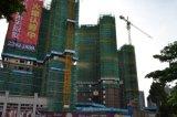 Kraan van de Toren van de Apparatuur van de Bouw van de bouw de Hydraulische