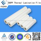 Matériau BOPP BOPP Film de laminage thermique avec revêtement EVA