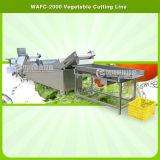 Lavagem Automática de couve vegetais Espinafres Processamento de desidratação de Corte da linha de produção