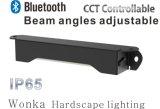 Bluetooth 흐리게 하는 기능을%s 가진 방수 LED 옥외 단계 빛