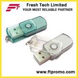 일반적인 플라스틱 회전대 USB 섬광 드라이브 (D203)