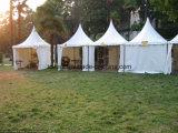 [5إكس5م] [غزبو] خيمة لأنّ خارجيّ أسرة حزب ويجمع حزب