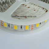 White Warm White SMD5050 LED Strip Lamp