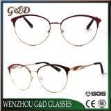 Het Optische Frame van het Oogglas van Eyewear van de Glazen van het Metaal van het Product van de vervaardiging