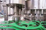 3 em 1 máquina de enchimento da água de frascos do animal de estimação 5L (CGF25-25-5)