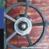 A105/F316/F304 ha fucinato la valvola di globo d'acciaio Cl150&Cl300&Cl600