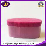 Prise voor de Zwarte Gloeidraad van de Borstel van de Wimper van de Kleur PBT Kosmetische