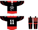 Healong passte Sportkleidung-Breathable Sublimation-Drucken-Hockey Jersey an