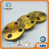 ANSI DIN 탄소 강철 장님은 위조했다 관 이음쇠 플랜지 (KT0397)를