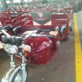 Груза времени поставки электрические 6-8 часов рикши Trikes