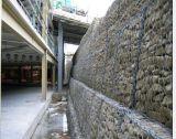 Hot-Dipped grande galvanizado de pared tipo espiga (Duración: 4)