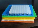 Pp personalizzati Hollow Sheet con Thickness 2mm-12mm