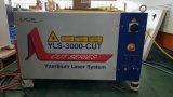 2000X6000mm máquina de corte del laser de fibra transferible resistente